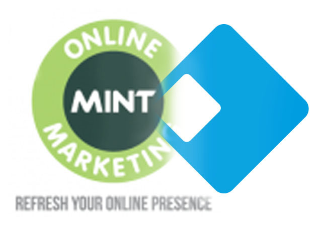 Mint Online Solutions: a Guest Blog Post